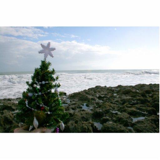 Christmas Tree Against Beach Rocks Cut Out