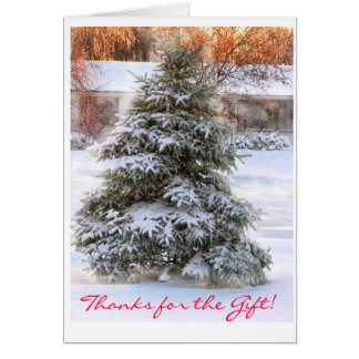 christmas tree in sunset, Thanks for the Gift! Card
