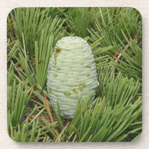 Christmas Tree Pine Cone Beverage Coasters