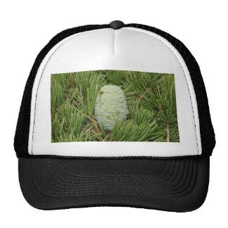 Christmas Tree Pine Cone Hat