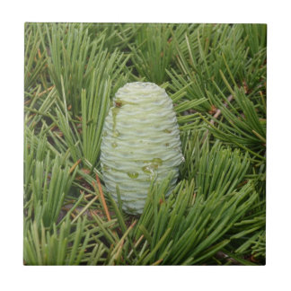 Christmas Tree Pine Cone Small Square Tile