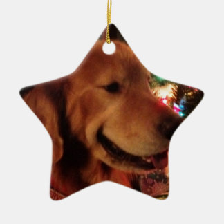 Christmas Tree Service Dog Ornament- Star shape Ceramic Star Decoration