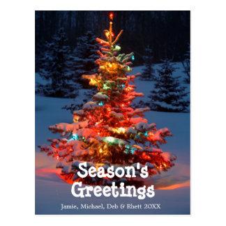 Christmas Tree with lights outdoors Postcard