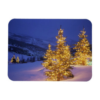 Christmas trees, Park City, Wastch Mountains, Rectangular Photo Magnet