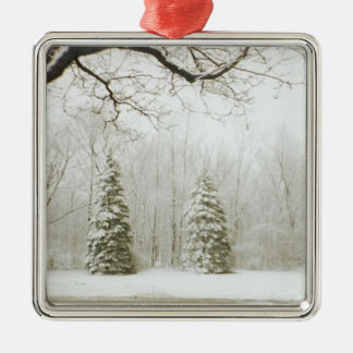 Christmas Trees Silver-Colored Square Decoration