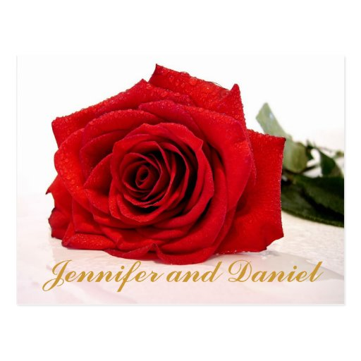 Christmas Wedding Save the Date Red Rose Post Card