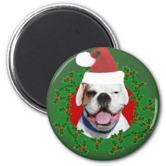 Christmas White Boxer magnet