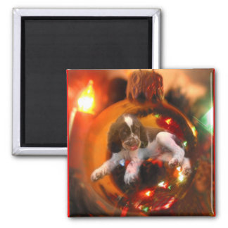 Christmas Wish Fridge Magnet