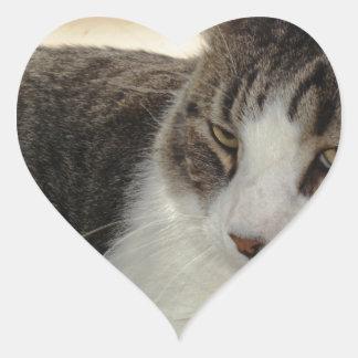 Christopher Heart Sticker