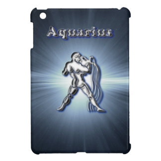 Chrome Aquarius iPad Mini Case
