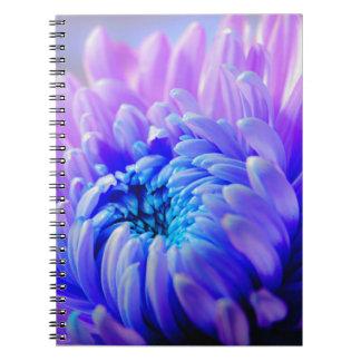 Chrysanthemum Burst Notebook