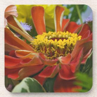 Chrysanthemum flower coaster