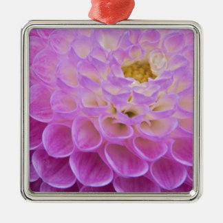Chrysanthemum flower decorating grave site in metal ornament