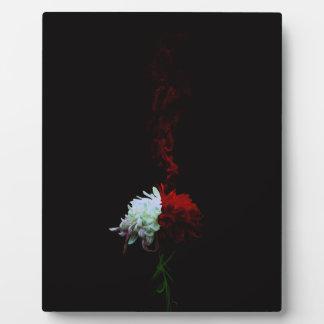 Chrysanthemum one 凛 - Chrysanthemum- Plaque