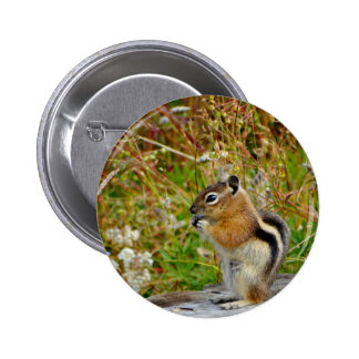 Chubby cute chipmunk on  on wood stump 6 cm round badge