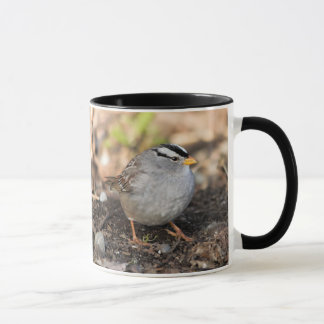 Chubby White-Crowned Sparrow in the Winter Sun Mug