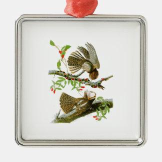 Chuck-will's Widow John Audubon Birds of America Metal Ornament