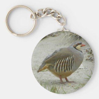 Chukar Partridge Key Ring