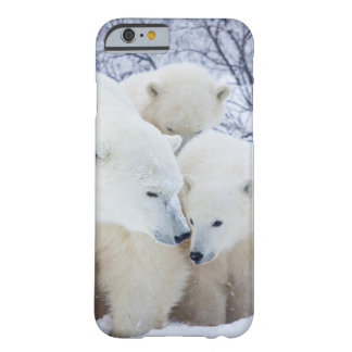 Churchill Wildlife Management Area Barely There iPhone 6 Case