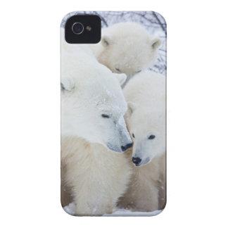 Churchill Wildlife Management Area Case-Mate iPhone 4 Case