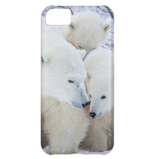 Churchill Wildlife Management Area iPhone 5C Case
