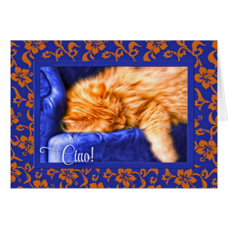 Ciao! Italian Language with Orange Tabby Cat Blue Card