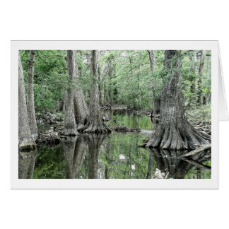 Cibolo Creek Greeting Card