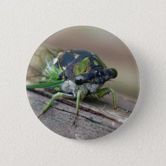Cicada 6 Cm Round Badge