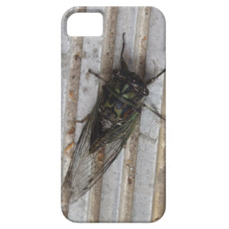 Cicada bug on your phone case