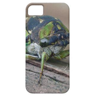 Cicada iPhone 5 Covers