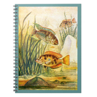 Cichlid Fish Notebook
