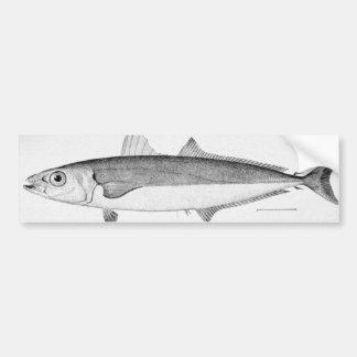 Cigar Fish Bumper Sticker