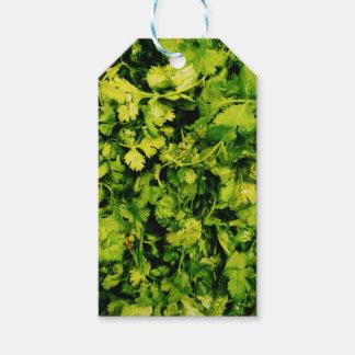 Cilantro / Coriander Leaves Gift Tags