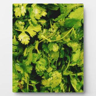 Cilantro / Coriander Leaves Plaque