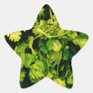 Cilantro / Coriander Leaves Star Sticker