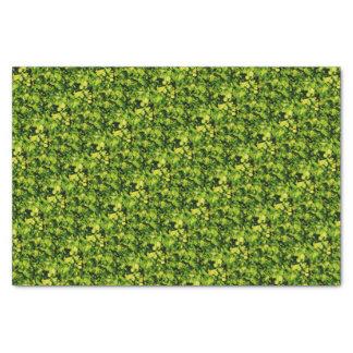 Cilantro / Coriander Leaves Tissue Paper