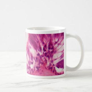 Ciliated epithelium under the microscope. coffee mug