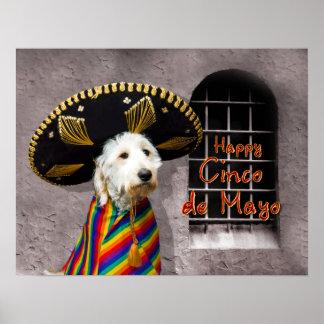 Cinco de Mayo Poster - Dog in Sombrero - Humor