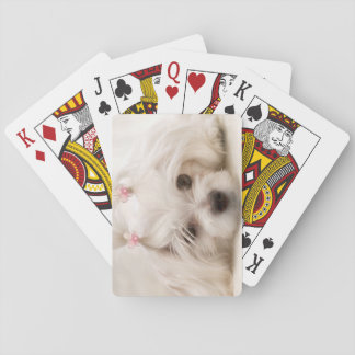 Cindy Playing Cards