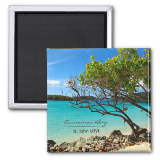 Cinnamon Bay St. John USVI Magnets