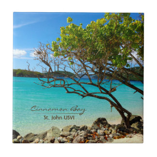 Cinnamon Bay St. John USVI Tropical Tile Art