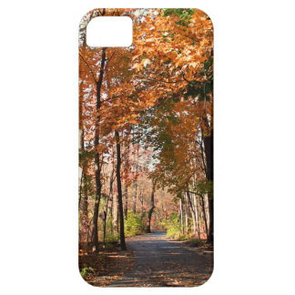 Cinnamon Booze iPhone 5 Case