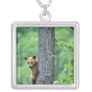 Cinnamon colored black bear in tree in square pendant necklace