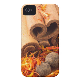 Cinnamon, peppercorn and saffron close-up iPhone 4 case