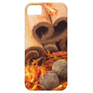 Cinnamon, peppercorn and saffron close-up iPhone 5 cases
