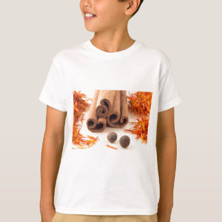Cinnamon sticks, aromatic saffron and pimento T-Shirt