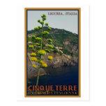 Cinque Terre - Century Plant Post Card
