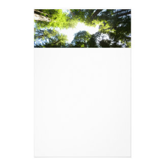 Circle of Redwood Trees at Redwood National Park Stationery