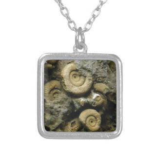 circles of fossil snails silver plated necklace