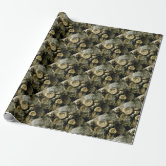 circles of fossil snails wrapping paper